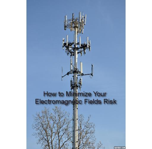 How to Really Minimize Your Electromagnetic Fields Risk - What You Need to Know About the Hidden Electromagnetic Fields Threat for Pain Sufferers and How You Can Minimize Your Electromagnetic Fields Risk.